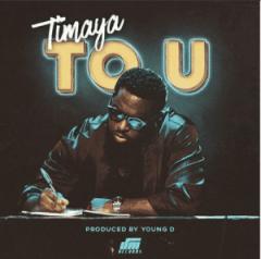 Instrumental: Timaya - To U (Remake by Melody Songs)